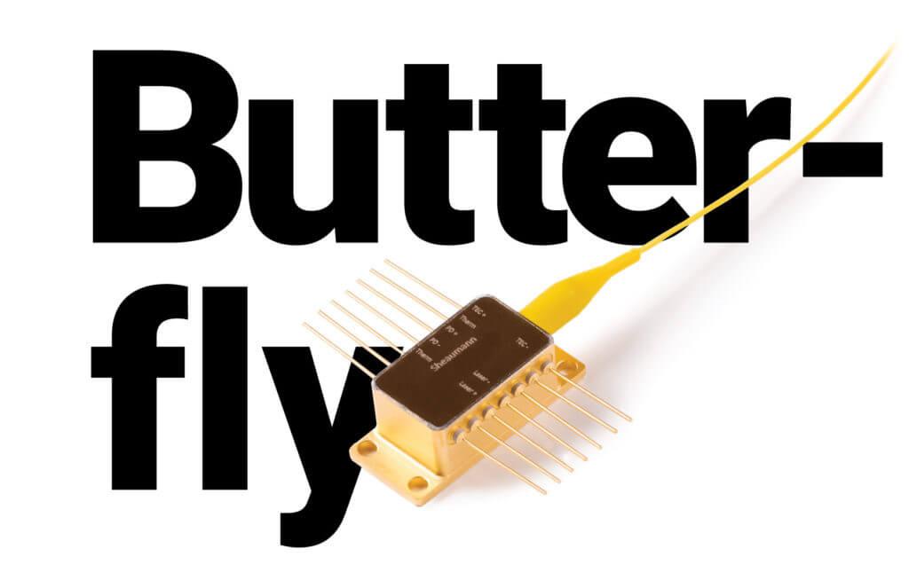 Sheaumann Butterfly header